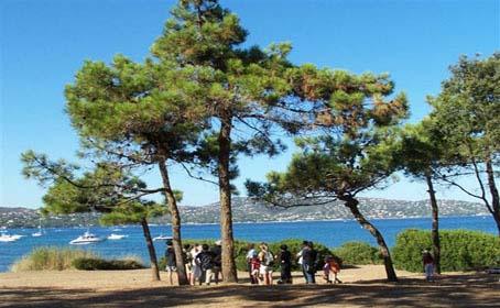 Balades natures et visites guid es site officiel de l 39 office de tourisme de sainte maxime - Office tourisme sainte maxime ...