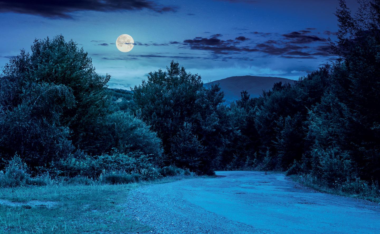 Balade guidée de nuit